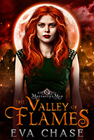 The Valley of Flames cover