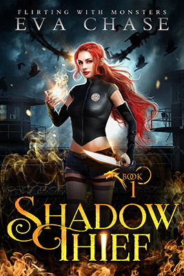 Shadow Thief cover
