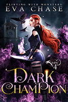 Dark Champion cover